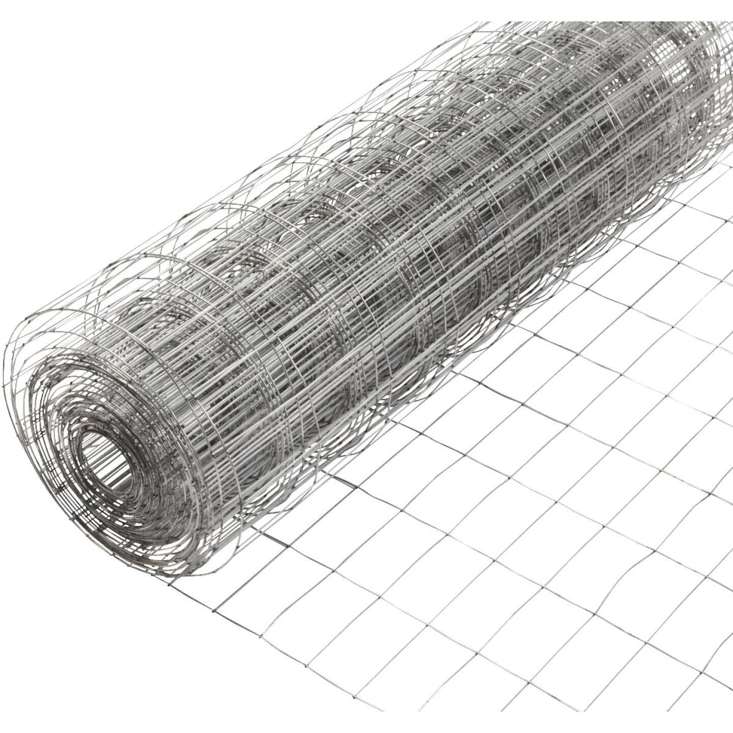 36 In. H. x 50 Ft. L. (2x4) Galvanized Welded Wire Fence Image 2